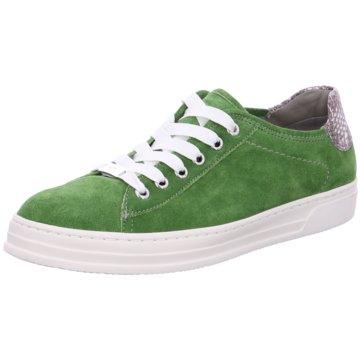 ara Sneaker Low grün