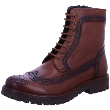 Sioux Boots Collection braun