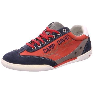 Camp David Sneaker Low rot