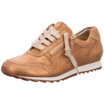 Hassia Sneaker Low gold