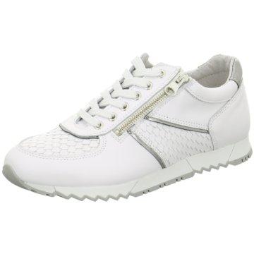 Bibob Sneaker Low weiß