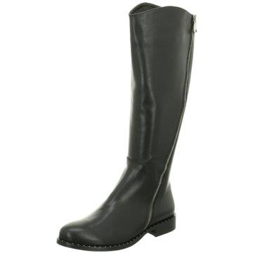 Ladyshoes Klassischer Stiefel schwarz