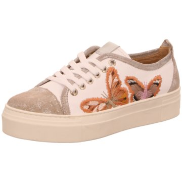 Alpe Woman Shoes Sneaker Low beige