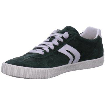 Geox Sneaker Low grün