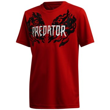 adidas T-ShirtsPREDATOR GRAPHIC T-SHIRT - FL2754 -