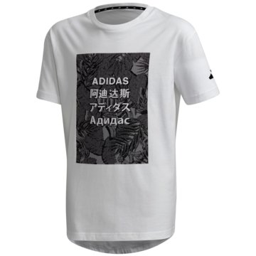 adidas T-ShirtsADIDAS ATHLETICS PACK T-SHIRT - FL2834 -