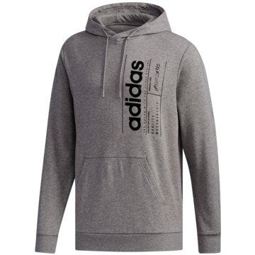 adidas HoodiesBrilliant Basics Hoodie - FM6091 -