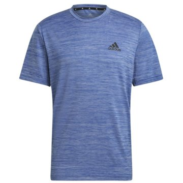 adidas T-ShirtsAEROREADY DESIGNED TO MOVE SPORT STRETCH T-SHIRT - GM2139 blau