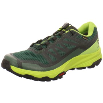 Salomon Trailrunning - L40794700 grün