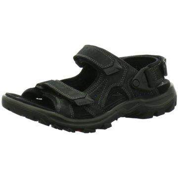 66d27a097b2a Ecco Offene Schuhe für Herren günstig online kaufen