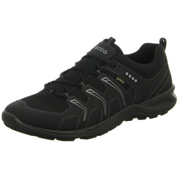 Ecco Outdoor SchuhTerracruise schwarz