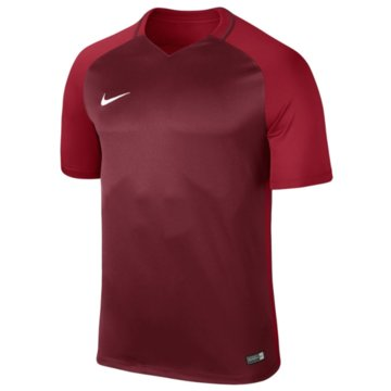 Nike FußballtrikotsKIDS' NIKE DRY TEAM TROPHY III FOOT - 881484 rot