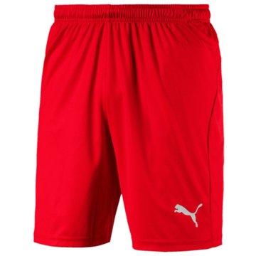 Puma Fan-HosenLiga Shorts Core -