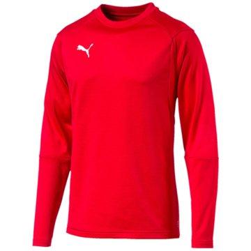 Puma Sweater rot