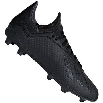 adidas FußballschuhX 18.3 FG Fußballschuhe schwarz