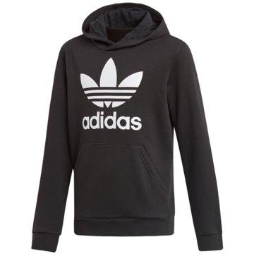 adidas HoodiesTREFOIL HOODIE - DV2870 schwarz