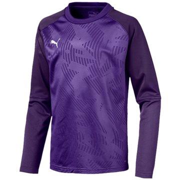 Puma Sweatshirts lila