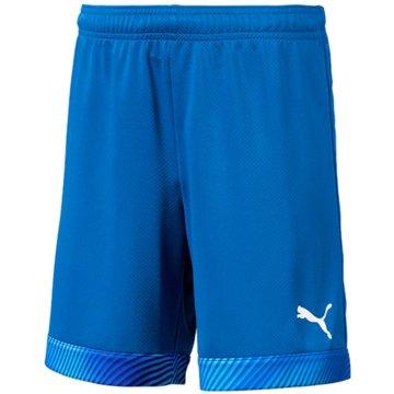 Puma Fußballshorts blau
