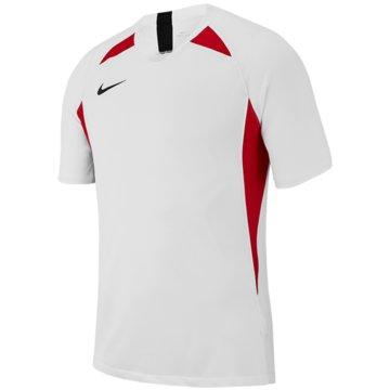 Nike FußballtrikotsNike Dri-FIT Striker V - AJ1010-101 weiß