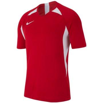 Nike FußballtrikotsNike Dri-FIT Striker V - AJ1010-657 rot
