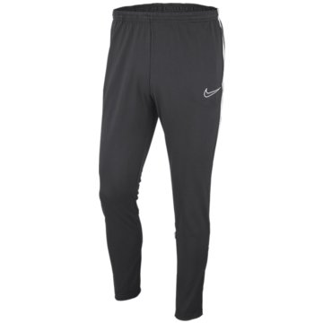 Nike TrainingshosenDRI-FIT ACADEMY - AJ9291-060 grau
