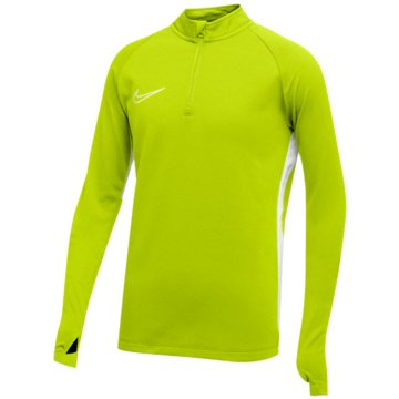 Nike FußballtrikotsNike Dri-FIT Academy19 - AJ9273-702 grün