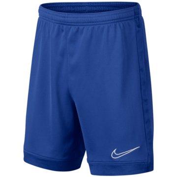 Nike Fußballshorts -
