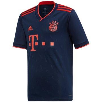adidas Fan-TrikotsFC Bayern Third Jersey 2019/2020 Junior blau