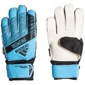 adidas TorwarthandschuhePRED TTRN FS J - DY2601 blau