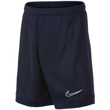 Nike FußballshortsDRI-FIT ACADEMY - AO0771-452 blau