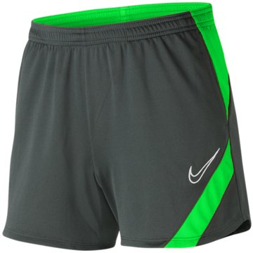 Nike FußballshortsDRI-FIT ACADEMY PRO - BV6938-064 grau