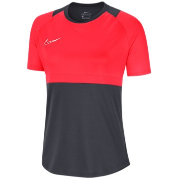 Nike FußballtrikotsDRI-FIT ACADEMY - BV6940-066 grau
