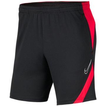 Nike FußballshortsDRI-FIT ACADEMY PRO - BV6946-062 grau