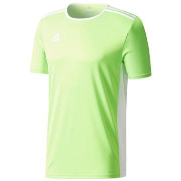 adidas FußballtrikotsENTRADA 18 JSYY - CE9563 -