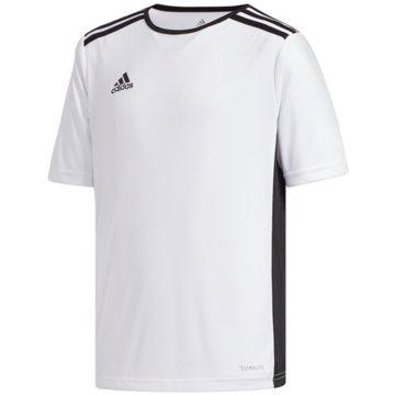adidas FußballtrikotsENTRADA TRIKOT - CF1044 weiß