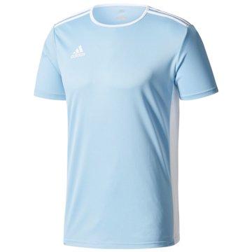 adidas FußballtrikotsENTRADA 18 JSYY - CF1045 -