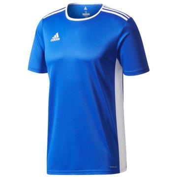 adidas FußballtrikotsENTRADA TRIKOT - CF1049 blau
