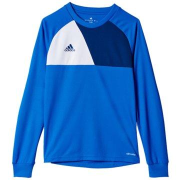 adidas FußballtrikotsAssita 17 Torwarttrikot - AZ5404 blau