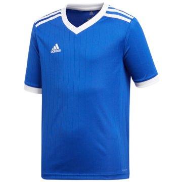 adidas FußballtrikotsTabela 18 Trikot - CE8916 blau