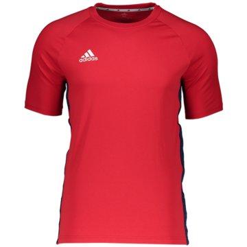adidas Fan-T-ShirtsTAN TAPE TEE - FP7892 -