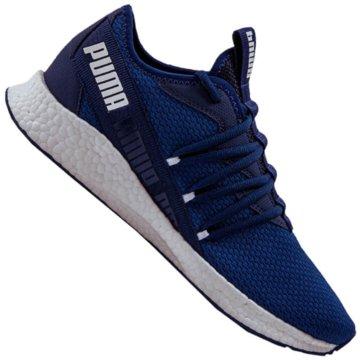 Puma Hallenschuhe blau