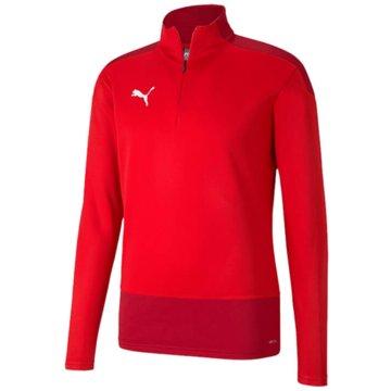 Puma SweatshirtsteamGOAL 23 Training 1/4 Z -
