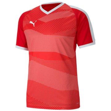 Puma Handballtrikots -