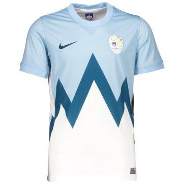 Nike Fan-TrikotsSLOVENIA 2020 STADIUM HOME - CD1055-436 -