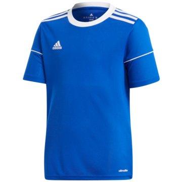 adidas FußballtrikotsSquadra 17 Trikot - S99151 -