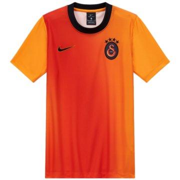 Nike Fan-T-ShirtsGALATASARAY THIRD - CW2520-836 -
