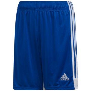 adidas FußballshortsTastigo 19 Shorts - DP3686 -