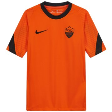 Nike Fan-T-ShirtsA.S. ROMA STRIKE - CK9629-819 -