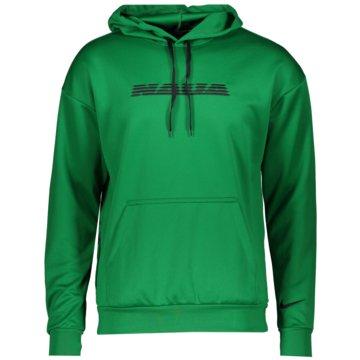 Nike Fan-Pullover & SweaterNIGERIA - CU1413-302 -