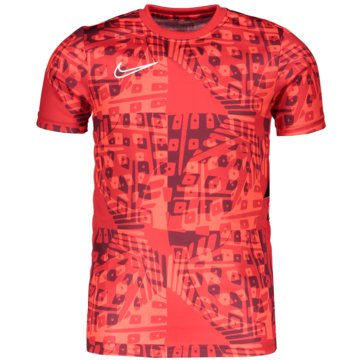 Nike T-ShirtsNike Dri-FIT Academy Big Kids' Short-Sleeve Soccer Top - CT2388-635 -